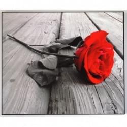 Dekorační obraz - Růže - 4050_00002