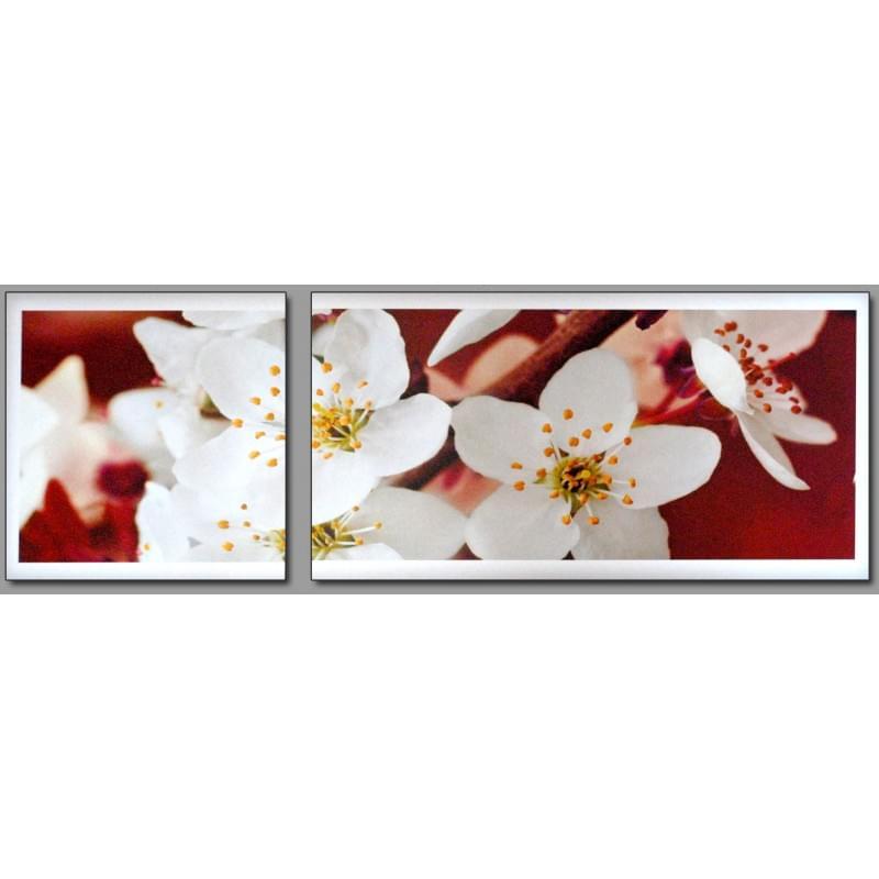 Dvoudílný dekorační obraz - Květiny - 2D_00005