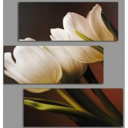 Třidílný dekorační obraz s motivem květin - 3D_6060_00002