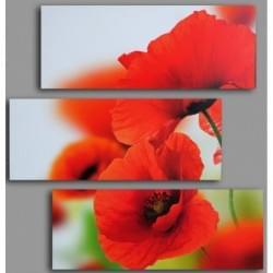 Třidílný dekorační obraz s motivem květin - 3D_6060_00003