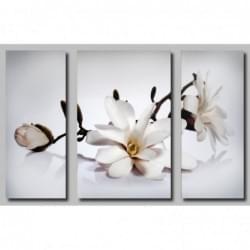 Třidílný dekorační obraz zátiší - 3D_5070_00007