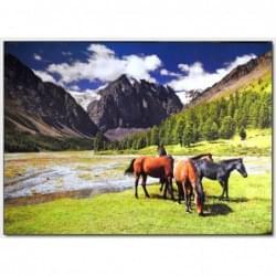 Dekorační obraz - Koně - 5070_0019