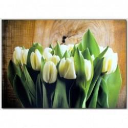 Dekorační obraz - Tulipány - 5070_0025
