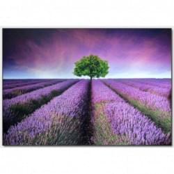 Dekorační obraz - Krajina - 10070_0004